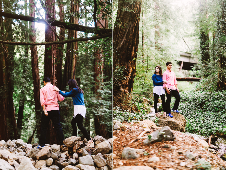 redwood forest engagement shoot